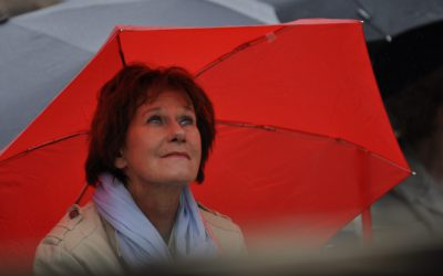 Zomerconcert bij Schijndel aan Zee was schot in de roos
